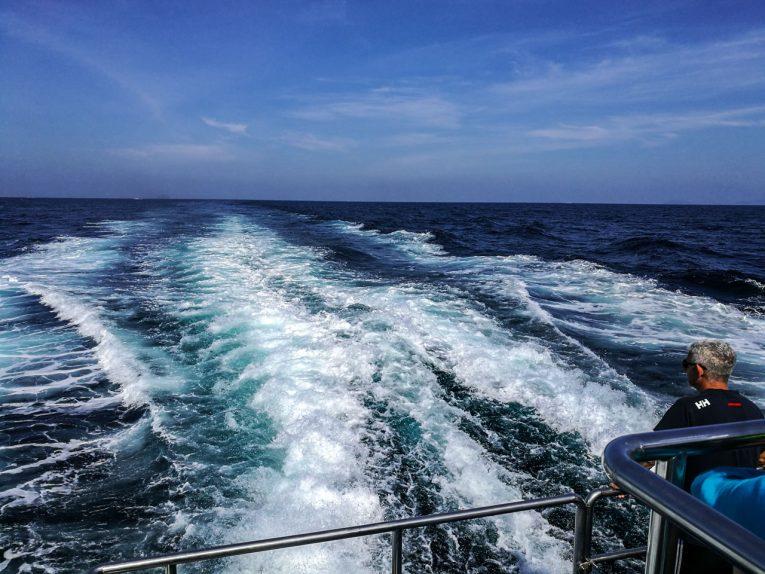 Como ir de Krabi a Phi Phi: Horário de ferry e distância