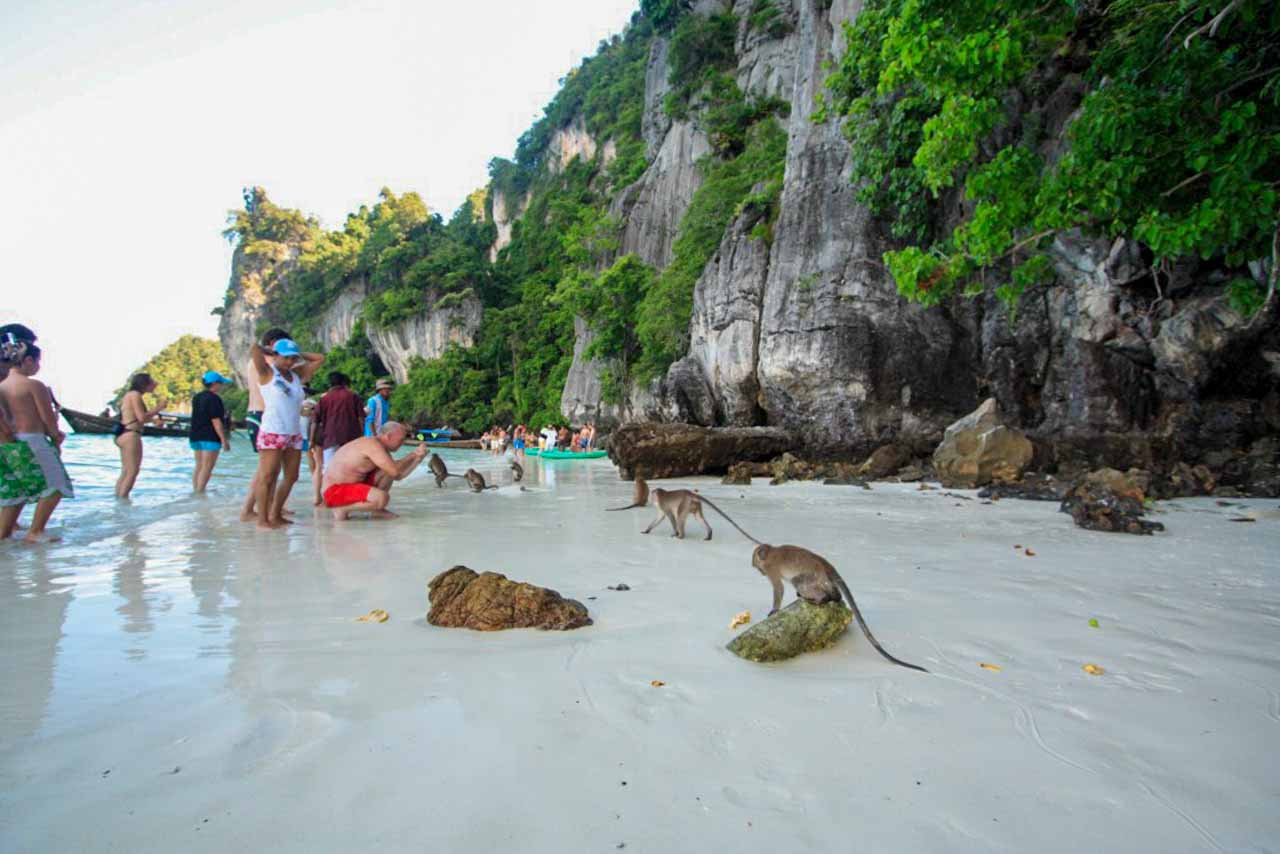 Monkey bay em Koh Phi Phi