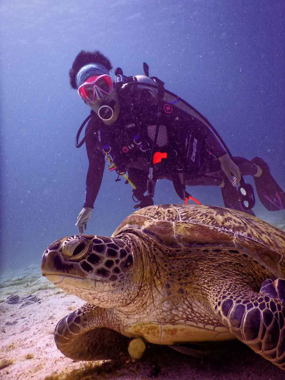 mergulho em Koh Tao com instrutor brazuca